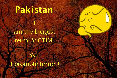 pakistan terror victim