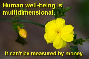 Money can't measure human well-being