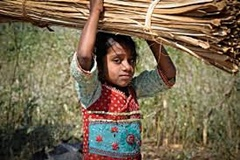 Child labor can only be eliminated by proper implementation of the RTE Act 2009