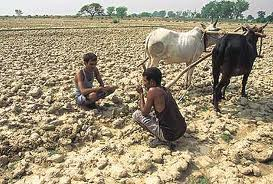 Indian Subsistence Farmers