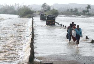 Impact of Phailin in Odisha