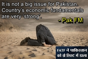 """Pak remains in denial as usual after FATF """"grey listing"""""""