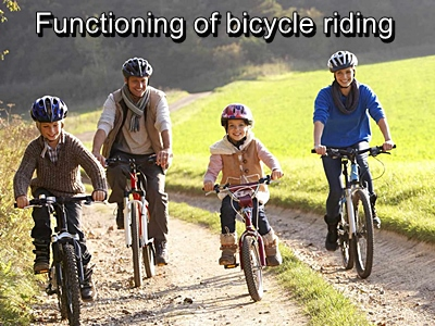 functioning of bicycle riding